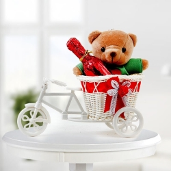 Bicycle+Teddy+2 Dairy Milk