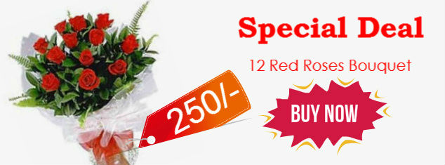 12 red rose deal