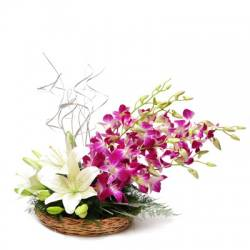 Orchids n Liliums