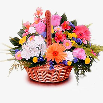 20 Mix Bright Colour Flowers Basket