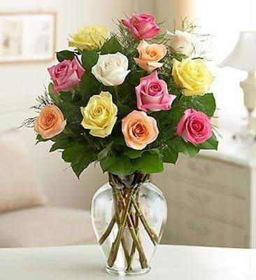 12 Multi Colour Roses in Vase