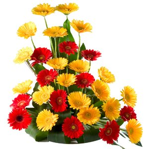 Mix Gerbera Basket