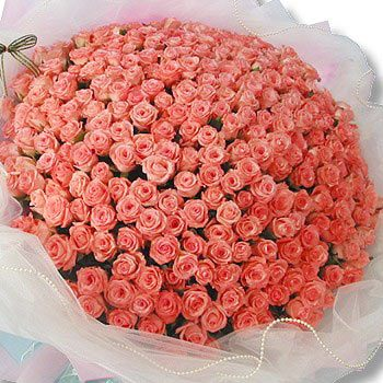 Big Bunch Of 150 Pink Roses