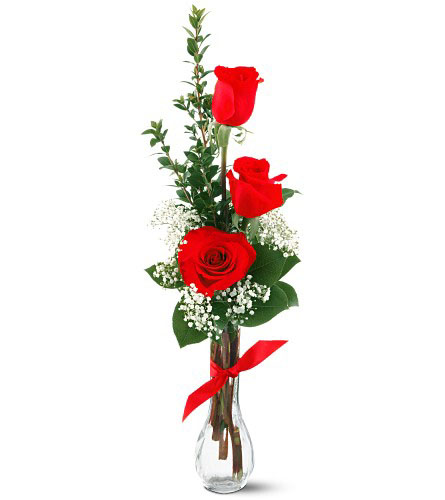 Send flowers to delhi amp ncr delivery by delhi florist