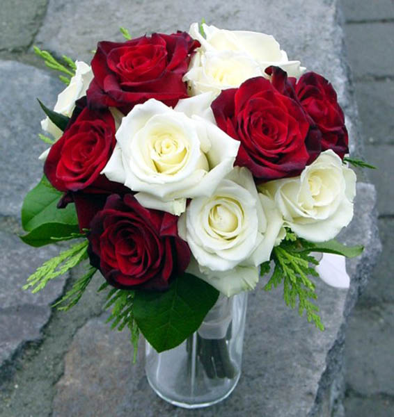 Red and White Roses in Vase