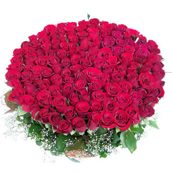 500 Roses Big Bouquet