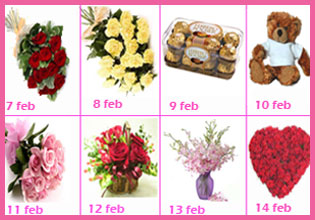 Valentine Week Gift 8 Day