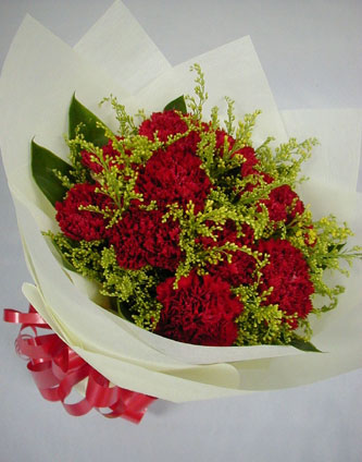 16 Red Carnation Bunch
