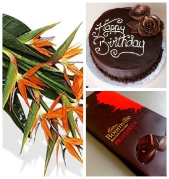 Strelitzia Flowers Chocolate and Cake