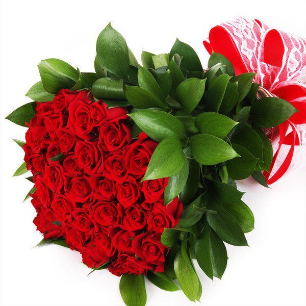 36 Red Roses with Big Leaves