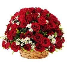 75 Red Roses Round Basket