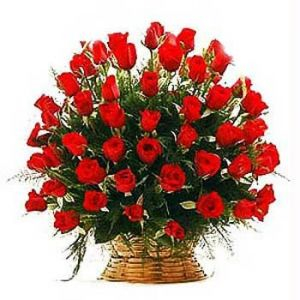 Round Arrangement of 36 Red Colour Roses