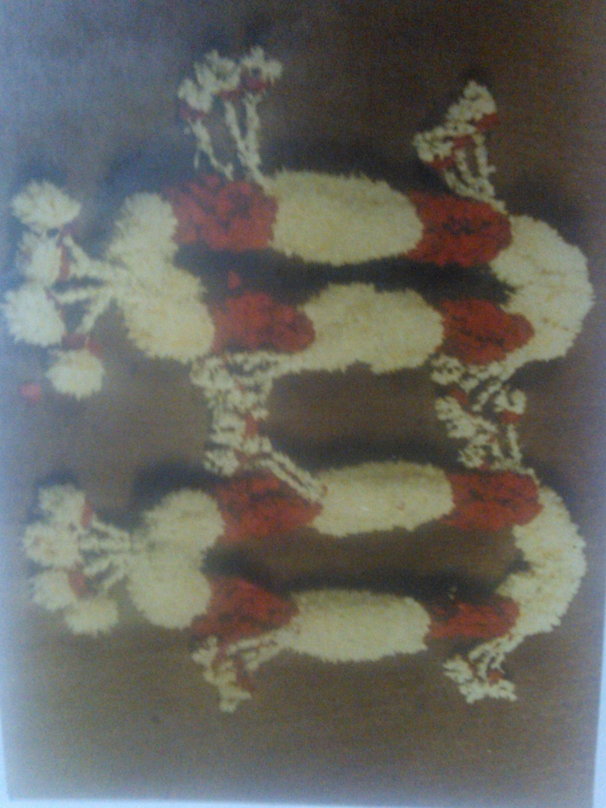 Rose and Godawari Garland