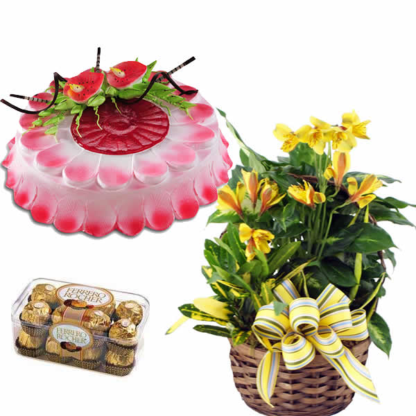 Exotic Yellow Lilies Basket with Cake and Chocolate