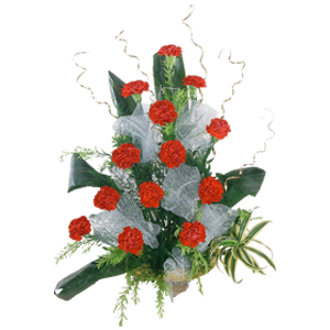 Red Carnations with Exotic Stuffing Basket