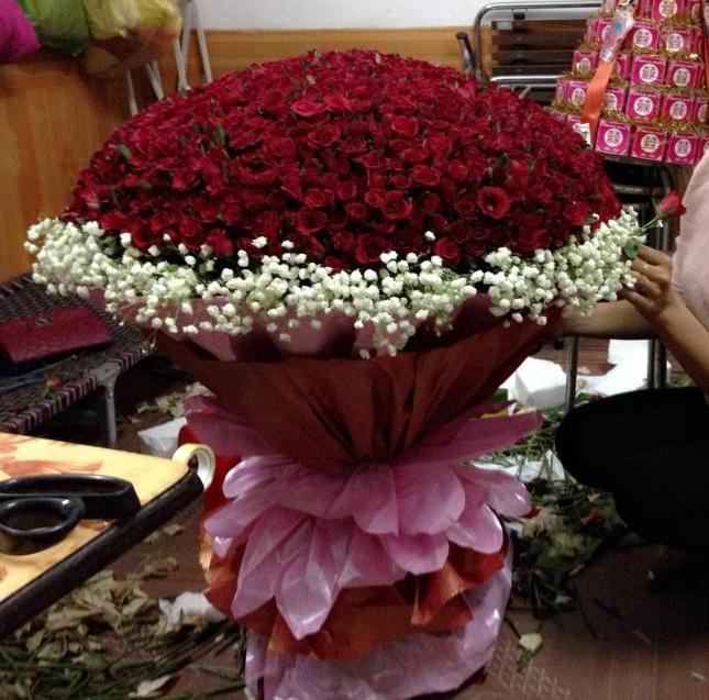 500 Roses