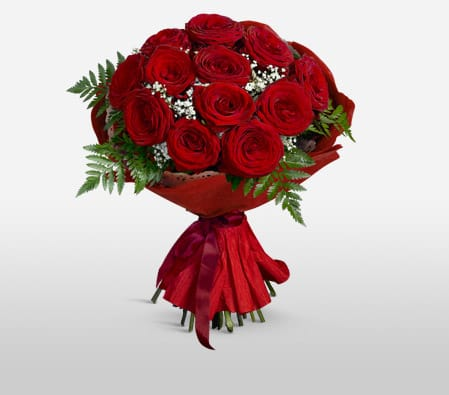 12 Red Rose in Red Tissue