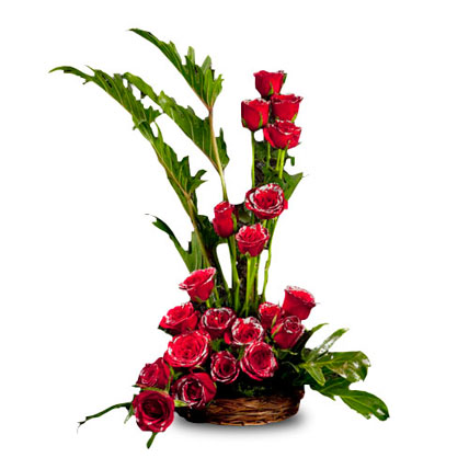 20 Red Roses Arrangement in Cane Basket