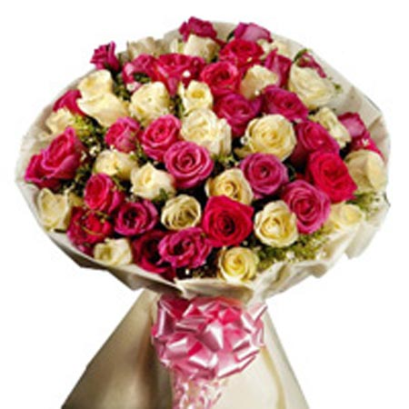 50 Mix Color Roses Bunch