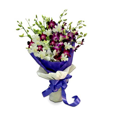 6 Purple and 6 White Orchids Bunch