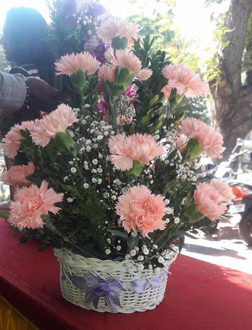 Baby Pink Carnation Basket