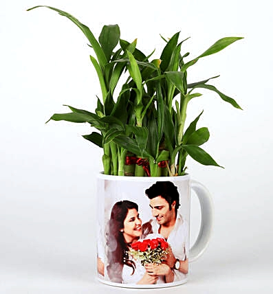 Lucky Bamboo in Personalised Mug