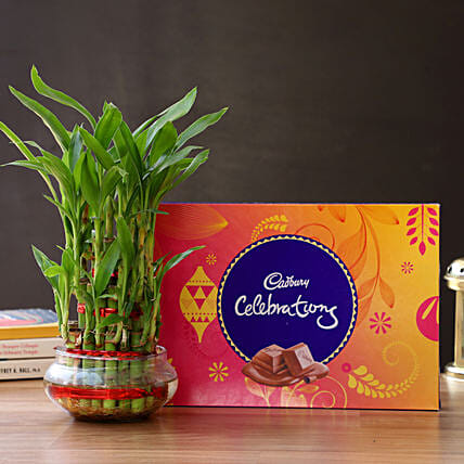 3 Layer Lucky Bamboo with Cadbury Celebration