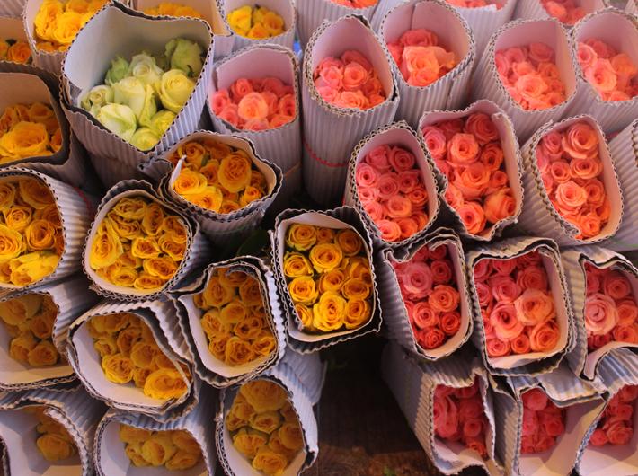 Bulk Roses 5 Bundles 5 Shades