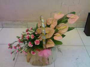 Anthurium Carnation Basket