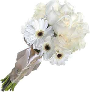 White Gerbera and Roses