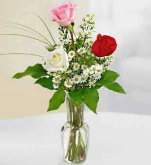 3 Mix Color Roses Vase