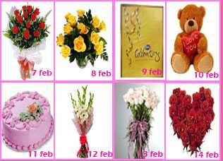 Valentine Week Gift Rose Day to Valentine