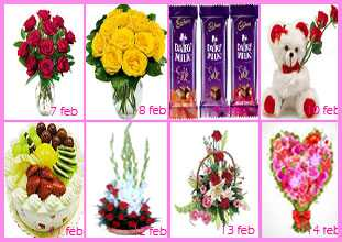 Gifts Rose Day to Valentines Day
