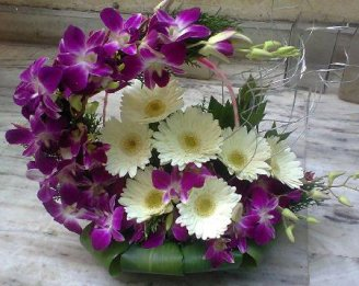 Purple Flowers Basket with Orchids and Gerberas